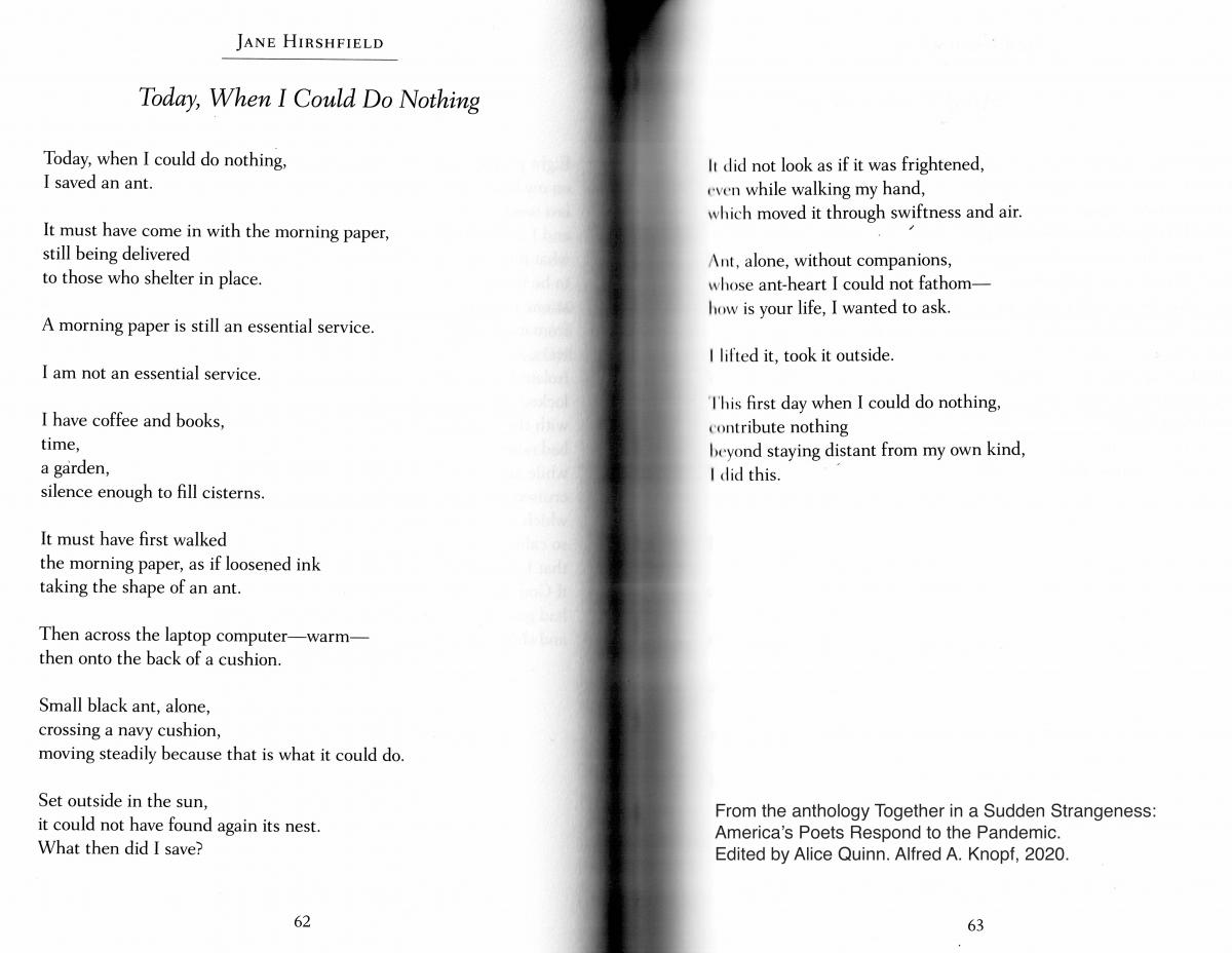 """The text of the poem """"Today, When I Could Do Nothing"""" by Jane Hirshfield"""