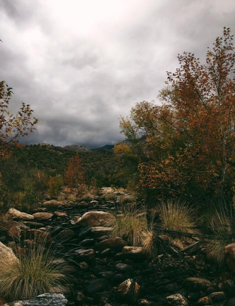 rocky desert path under cloudy sky