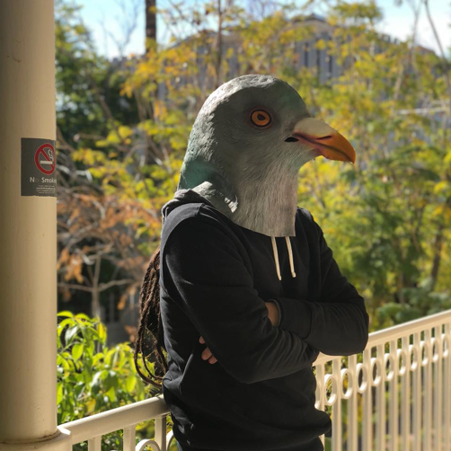 Photo of man wearing pigeon mask
