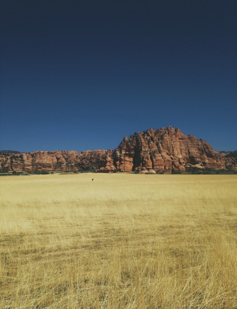 arizona grassland with large rock in the background