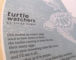 Detail of broadside: Turtle Watchers by Linda Hogan
