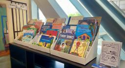 A colorful book display set against a bright window