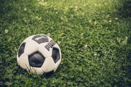 Soccer ball resting in the grass / photo by Johann Rösch