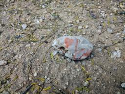 A small rock with a red heart sit on the ground in a desert landscape