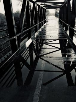 Photo of puddles on a bike path
